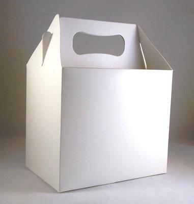 Kids Party Box Lunchbox White Choose Quantity